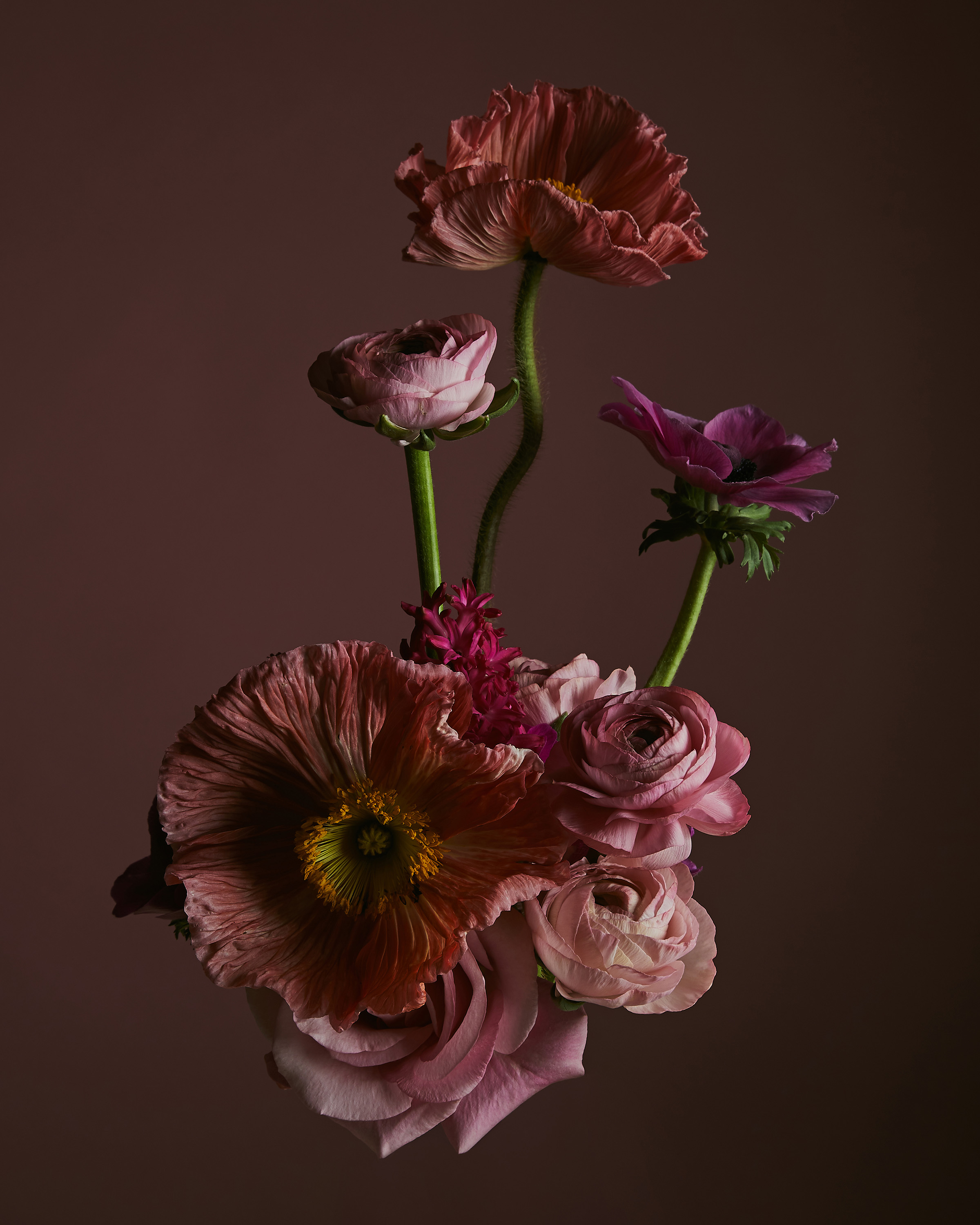 Rikki-Ward-Photographer_FLOWER_SCULPTURES_1
