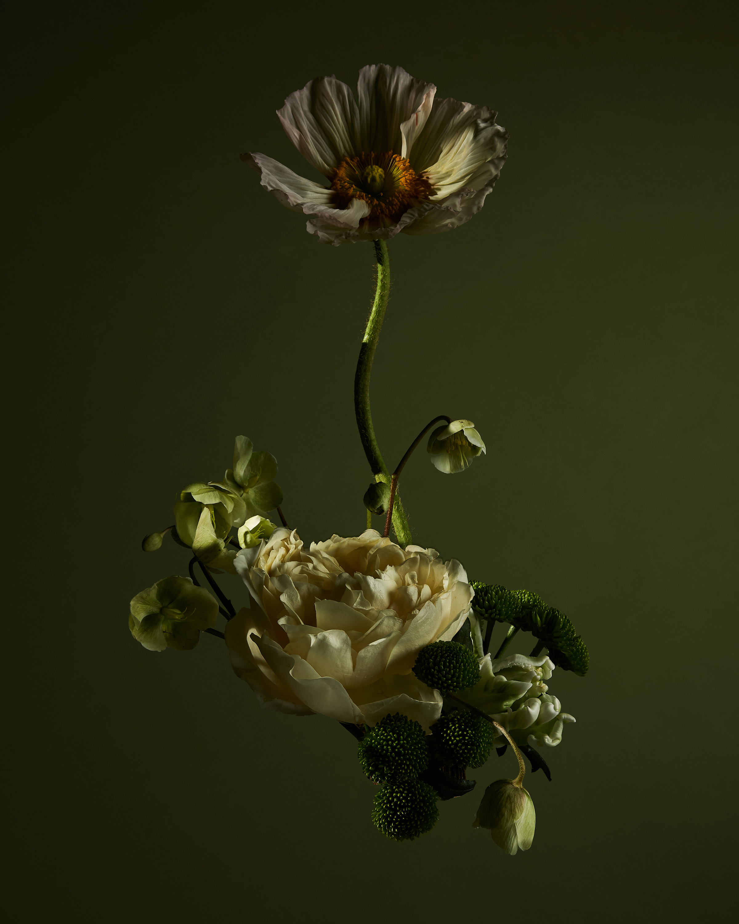 Rikki-Ward-Photographer_FLOWER_SCULPTURES_6