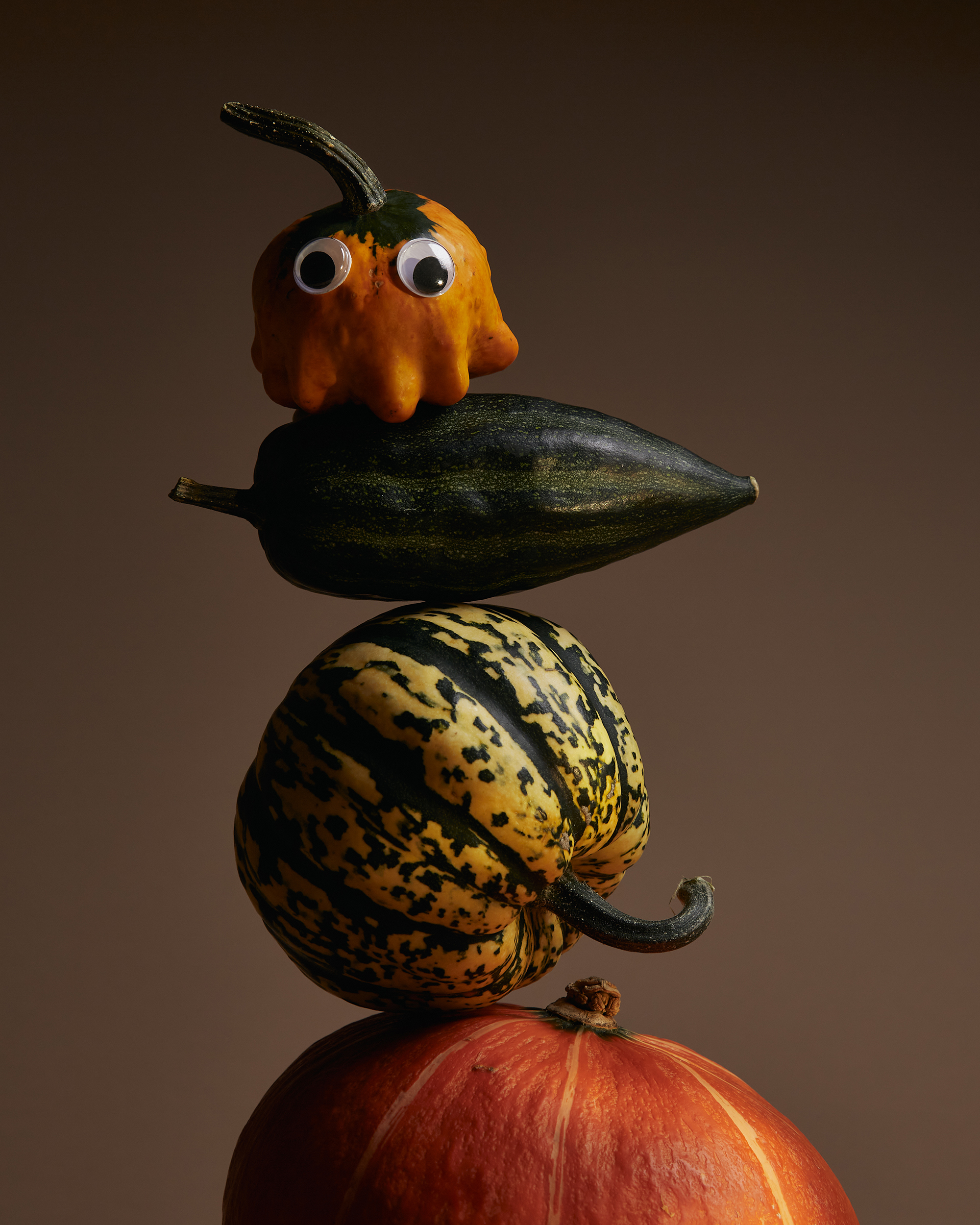 Rikki_Ward_Photographer_GOURDS_1